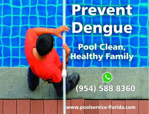 Prevent Dengue! Pool Clean, Healthy Family  – Pool service Florida – Weston, Hollywood, Sunrise