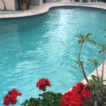 pool maintenance service in margate (2)