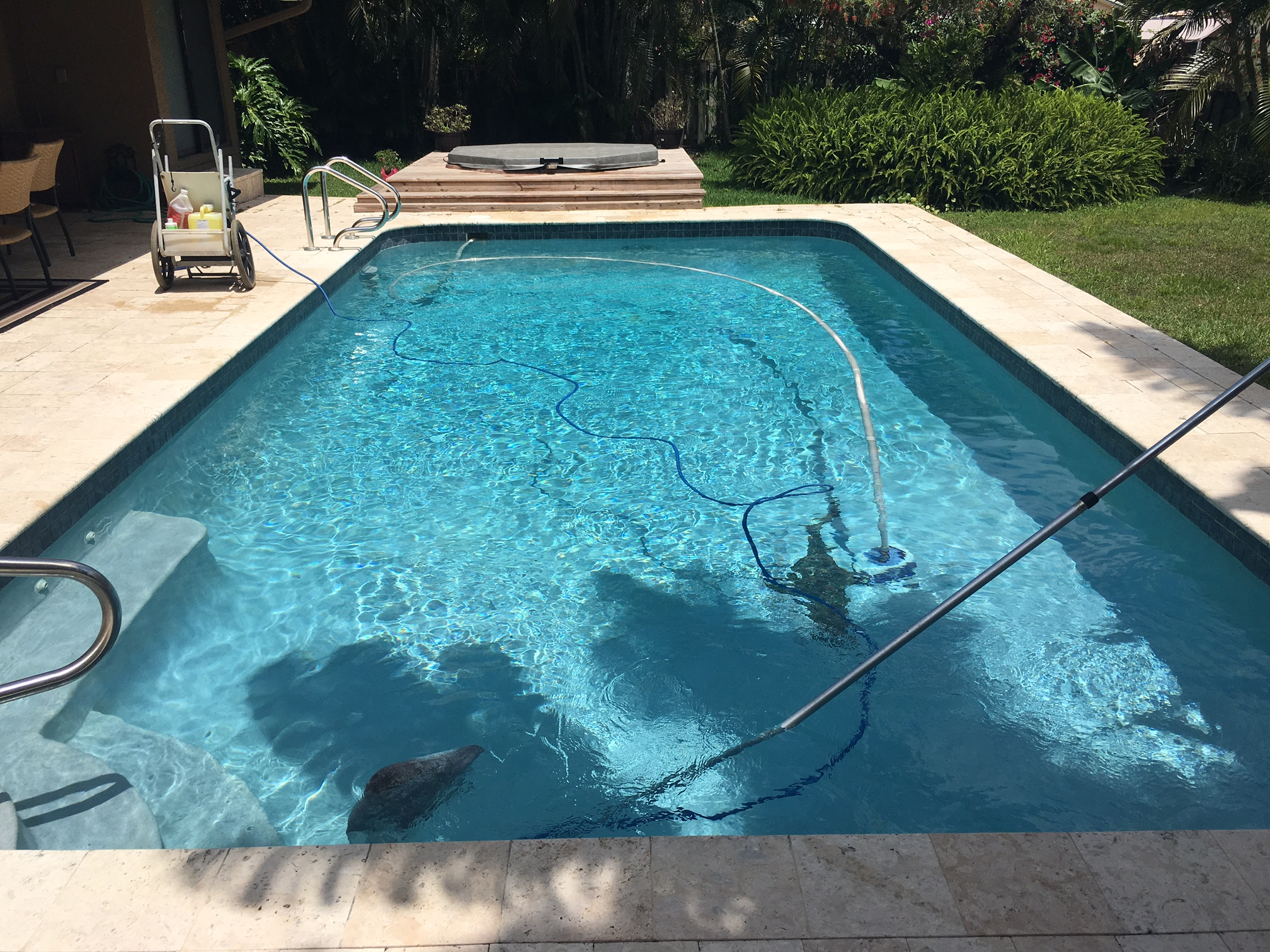 pool maintenance service in margate