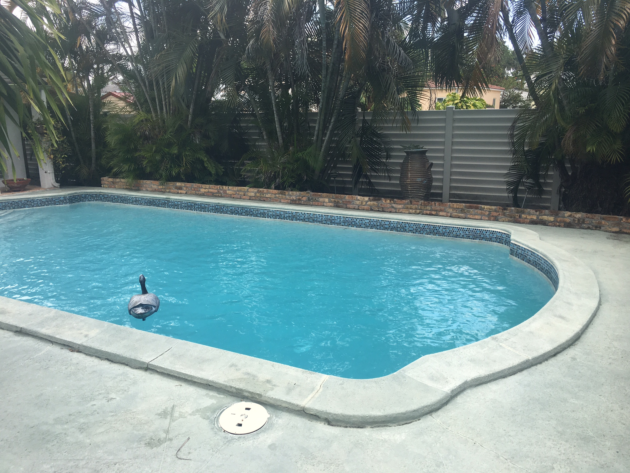 pool service wilton manors-2